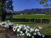 huntervalley view s